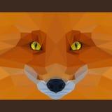 野生狐狸今后凝视 自然和动物生命题材 抽象几何多角形三角例证 免版税库存照片