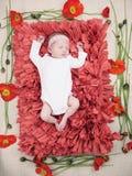 睡觉新出生的女婴花 库存图片