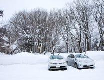 Υπαίθριος σταθμός αυτοκινήτων χιονιού Στοκ Εικόνες