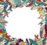 Το χρώμα συνόρων πλαισίων πουλιών μυγών απομονώνει στο λευκό Στοκ Εικόνες