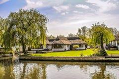 河沿绿洲 图库摄影