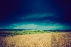 暴风云葡萄酒照片在麦田的 库存图片