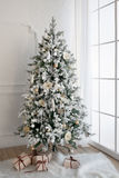 与礼物的圣诞树在底下在客厅 库存图片
