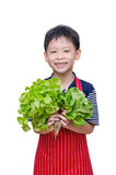 有新鲜蔬菜的男孩 库存图片