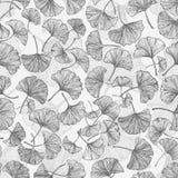 与银杏树叶子的花卉无缝的背景 库存图片