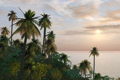 叶子热带海岛的醉汉 免版税图库摄影