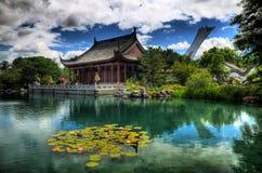 κινεζικός κήπος Στοκ εικόνες με δικαίωμα ελεύθερης χρήσης