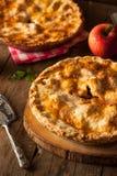 苹果新鲜的自创饼 免版税库存照片