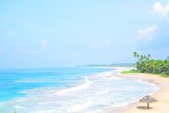 与没人,棕榈树和金黄沙子顶视图的美丽的热带海滩 挥动卷入与白色干净的泡沫的海滩 免版税库存图片