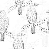 Σκίτσο του πουλιού Στοκ Εικόνα