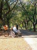 有自行车的成熟妇女,读在一条长凳在公园 库存照片