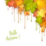 秋天传染媒介水滴油漆叶子 库存图片