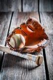 葡萄酒棒球手套和老球 库存照片