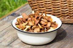 碗在土气桌上的新鲜的蘑菇 库存照片