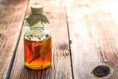 Здоровые травы в бутылках как домодельное лечение Стоковое Фото