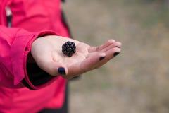 在女孩的手上的大黑莓 免版税库存图片