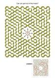 迷宫比赛 免版税图库摄影