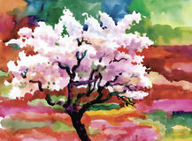 开花的水彩春天树在庭院导航例证 库存照片