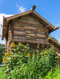 日志俄国样式的草本房子 库存图片
