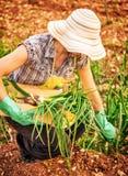 农夫妇女在庭院里 免版税库存照片