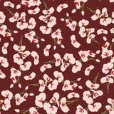 花卉背景样式设计 免版税库存照片