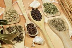 Αρωματικοί ξηροί χορτάρια και σπόροι που χρησιμοποιούνται ως καρυκεύματα στο μαγείρεμα Στοκ Εικόνες