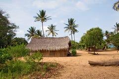 传统小屋在莫桑比克,东非 免版税图库摄影