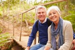 愉快的资深夫妇坐一座桥梁在森林,画象里 库存照片