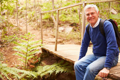 Старший человек на мосте в лесе смотря к камере, взгляду со стороны Стоковое фото RF