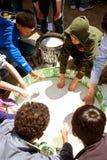 孩子在木盆的棍子手在科学展览的黏性物质 库存照片