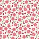 Άνευ ραφής σχέδιο απλών και λουλουδιών ομορφιάς διάνυσμα Στοκ φωτογραφία με δικαίωμα ελεύθερης χρήσης