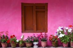 关闭与桃红色墙壁的木窗口,在村庄尼泊尔 免版税库存图片