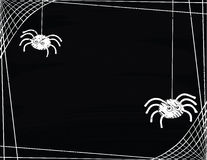 转动网边界的一个对逗人喜爱的蜘蛛 免版税库存照片