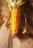 烤甜玉米棒子 库存图片