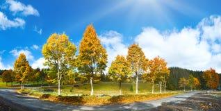 第一冬天雪和秋天五颜六色的树临近乡下公路 免版税库存图片