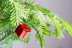 与绿色的圣诞节或新年背景 图库摄影