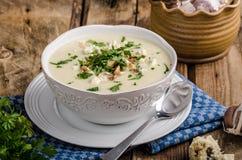 花椰菜汤用青纹干酪 库存照片