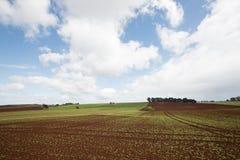 Обрабатываемая земля накидки таблицы Стоковое Изображение RF