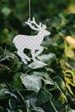 与冷淡的叶子的驯鹿装饰品 库存照片