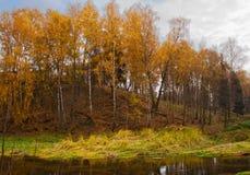 река банка осени спелое Стоковая Фотография