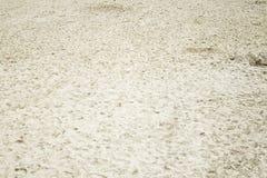 干燥沙子海滩 免版税图库摄影