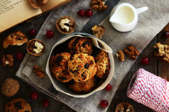 Домодельные печенья овсяной каши с гайками, изюминкой и высушенными клюквами Стоковые Изображения