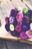 束五颜六色的翠菊开花在开放书,葡萄酒作用 免版税库存照片