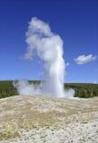 老忠实的喷泉,黄石国家公园,怀俄明 免版税库存图片