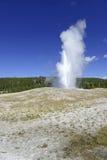 老忠实的喷泉,黄石国家公园,怀俄明 库存照片