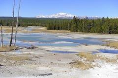 在黄石国家公园,怀俄明的地热活动 免版税图库摄影