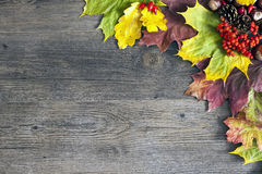 φύλλα αντιγράφων ανασκόπησης φθινοπώρου πέρα από διαστημικό ξύλινο Στοκ Εικόνα