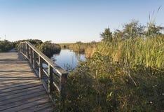 在堡垒皮肯斯的木人行桥道路 免版税库存照片