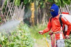 喷洒的杀虫剂 免版税库存照片