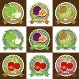 套各种各样的新鲜水果优质质量标记标签徽章贴纸和商标在传染媒介设计 免版税图库摄影